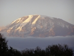 Kilimanjaro